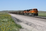 BNSF 6248